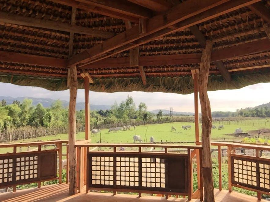 Bakaan Farm Training Center in Ilocos Sur