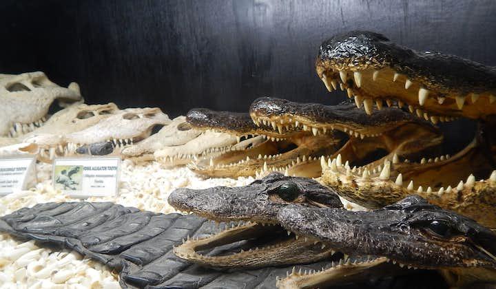Crocodile display at the Crocodile Park & D'Bone Collector Museum in Davao