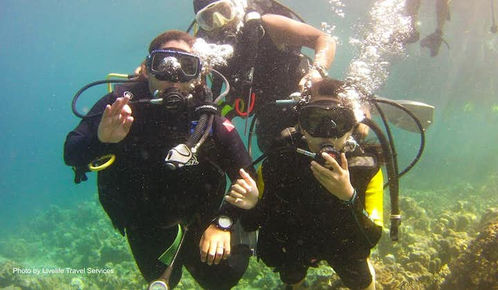 Travellers diving in Talikud Island during the tour