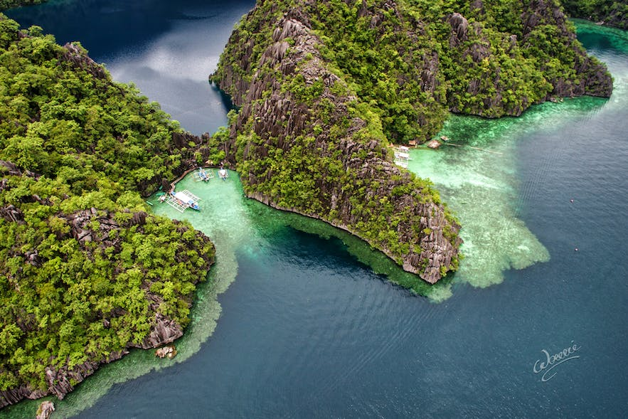 Aerial view of Barracuda Lake in Coron Palawan