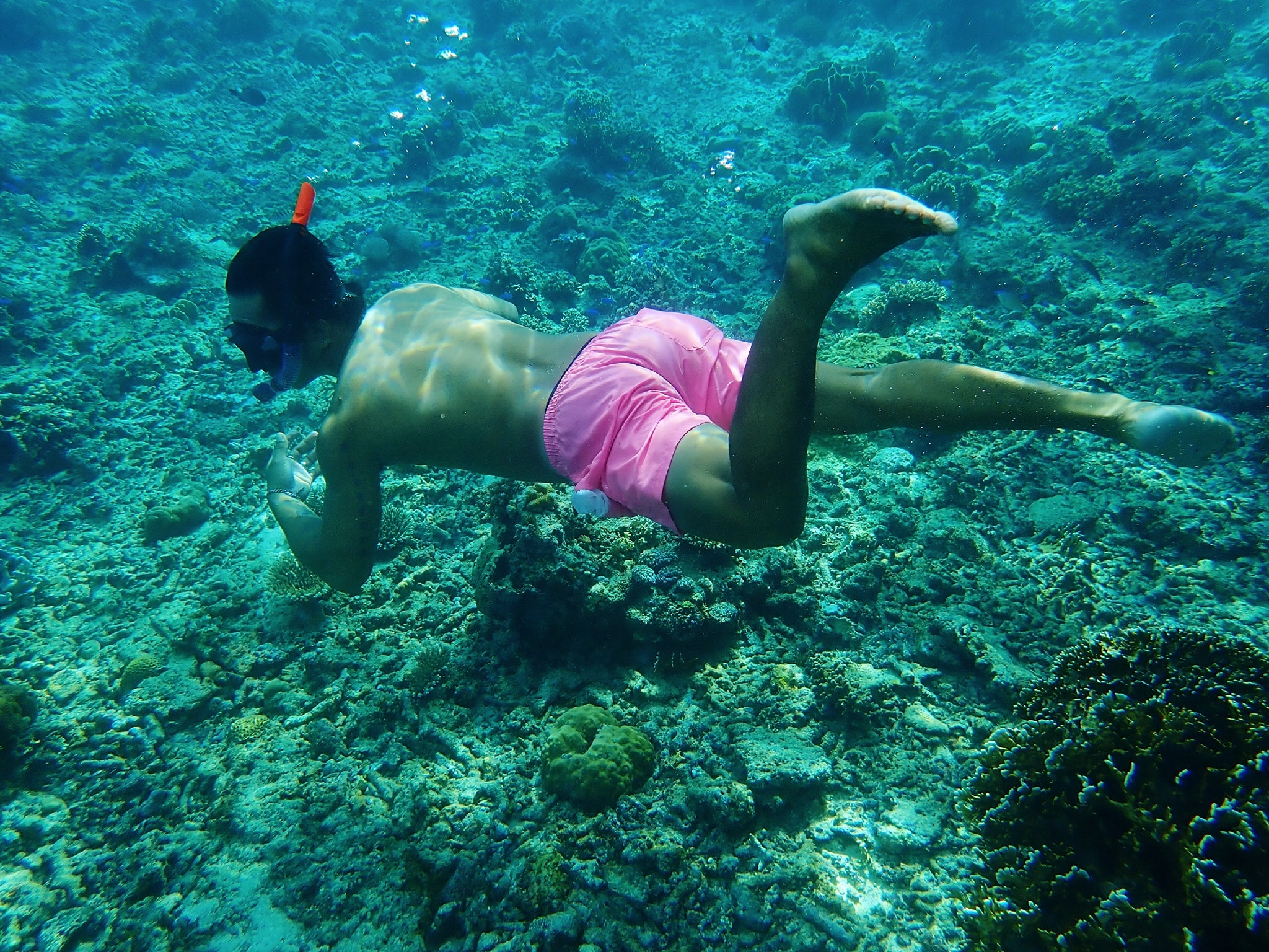 A guy snorkelling in Carabao Island