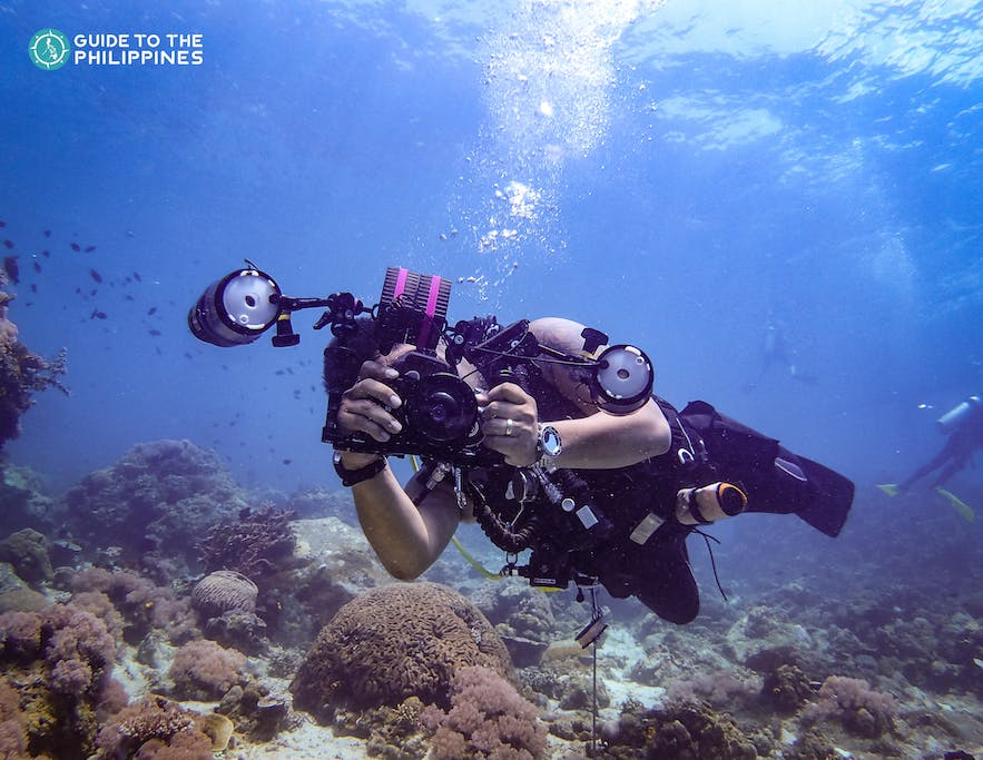 A diver taking a photograph in Anilao