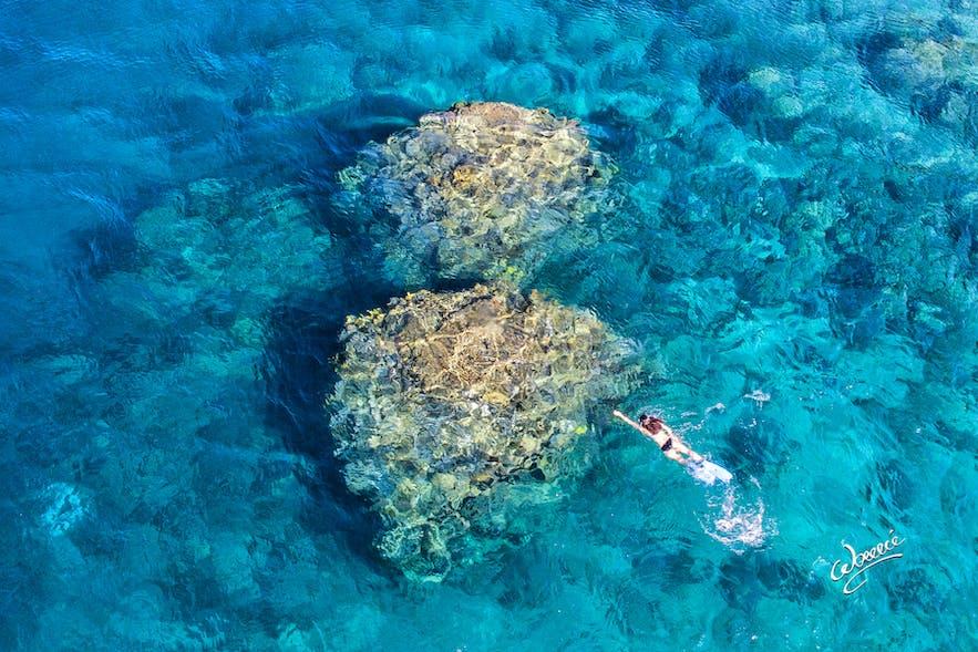 A diver in Twin Rocks in Anilao Pier