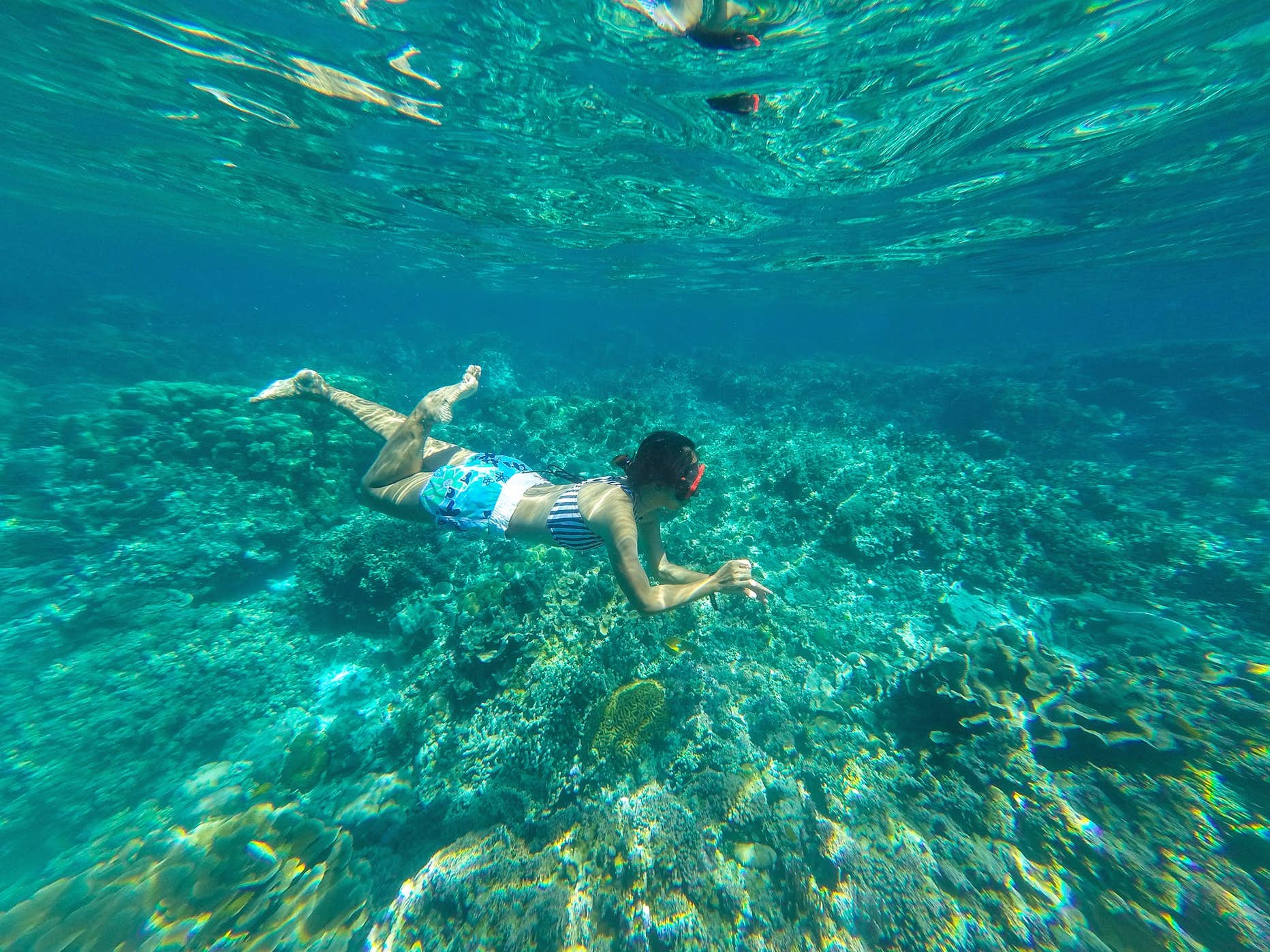 A girl snorkelling in Coral Garden in Davao