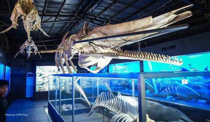 Big bones on display in D'Bone Collector Museum in Davao City