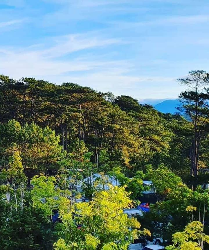 Green trees surrounding The Forest Lodge at Camp John Hay