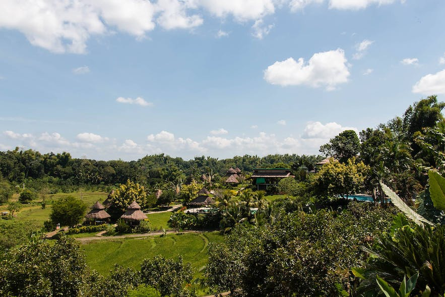 Wide view of the green landscape in Damires Hills Resort in Iloilo