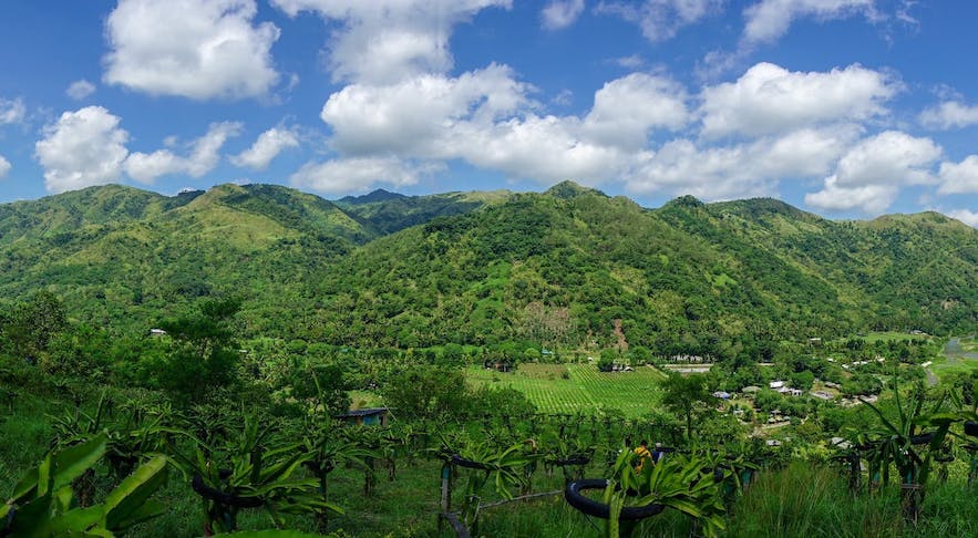 Wonderful view of Palaya Farm in Rizal