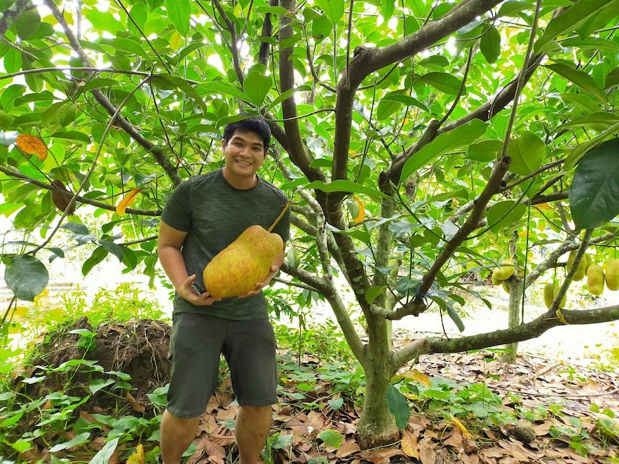 A guy posing with a jackfruit in Moca Family Farm