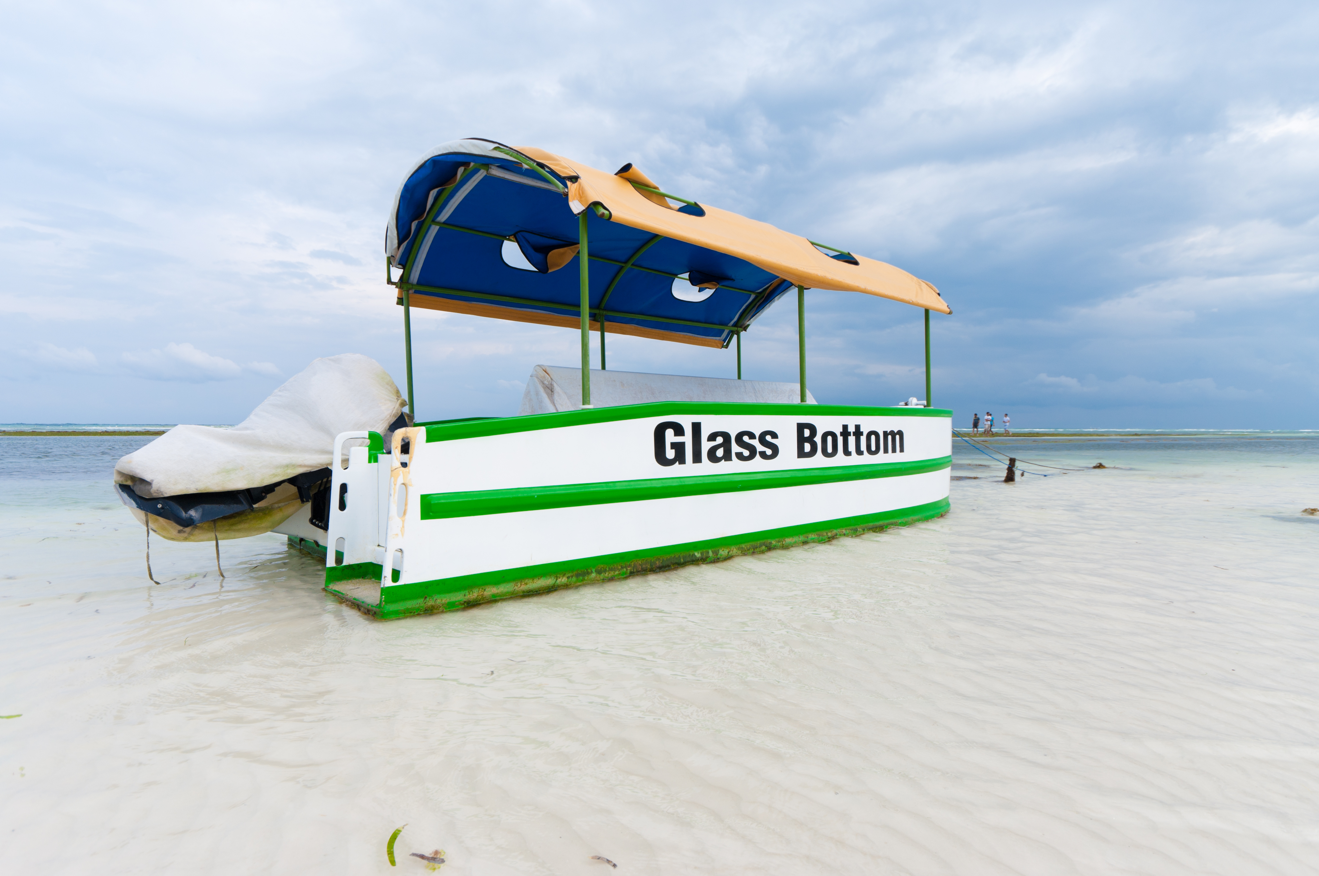 Complimentary glass bottom boat tour
