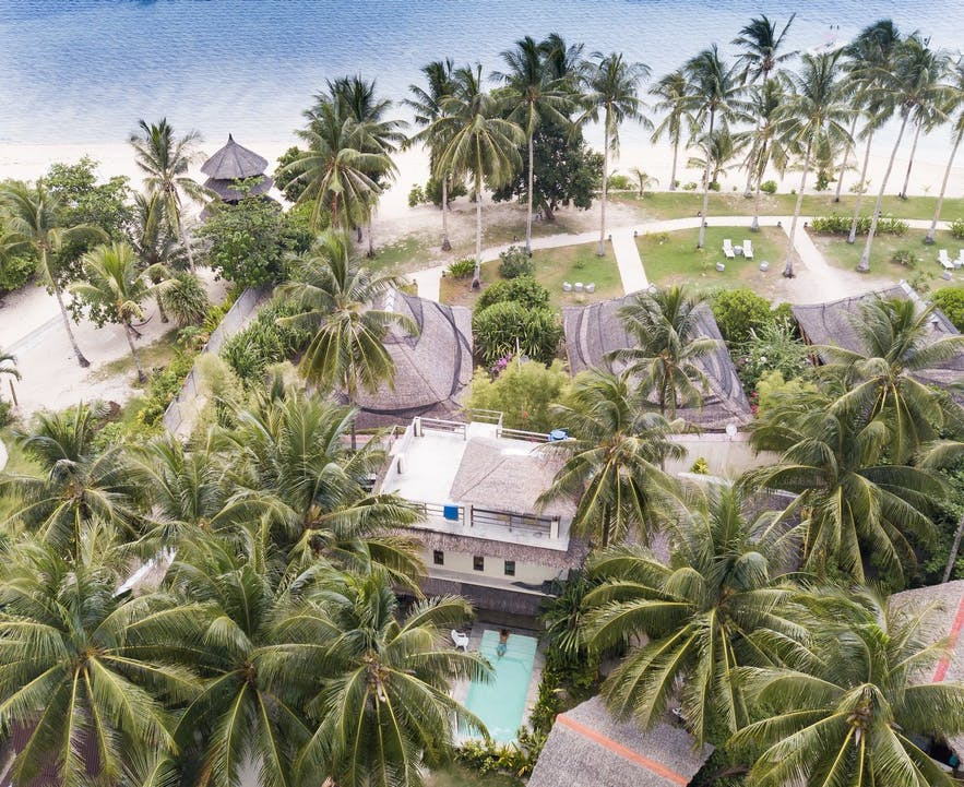 Palm trees surrounding Kawili Resort in Siargao
