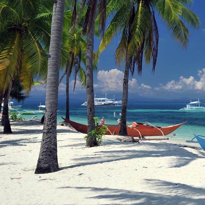 Boats docked on the shore of a beach in Malapascua Island, Cebu