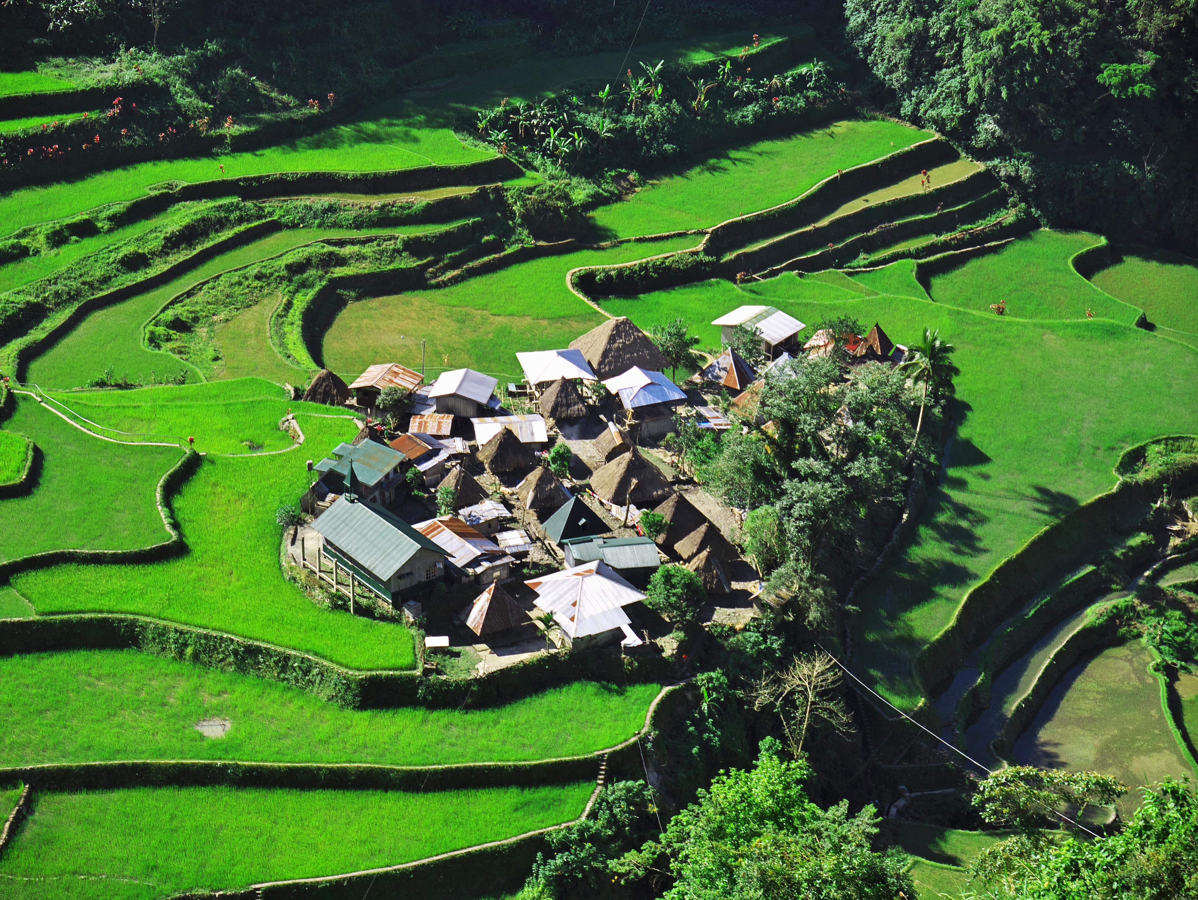Small village of Bangaan in the middle of a rice terraces