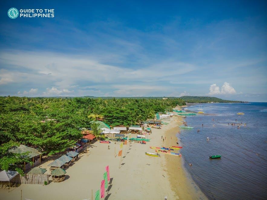 Aerial view of a beach in Laiya Batangas