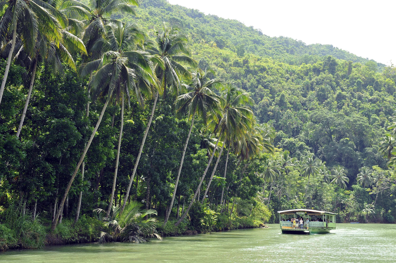 Relaxing environment at Loboc River in Bohol