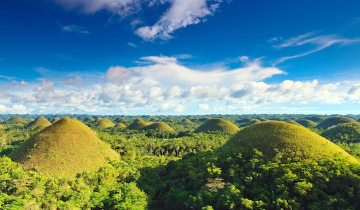 Sunny day in Chocolate Hills