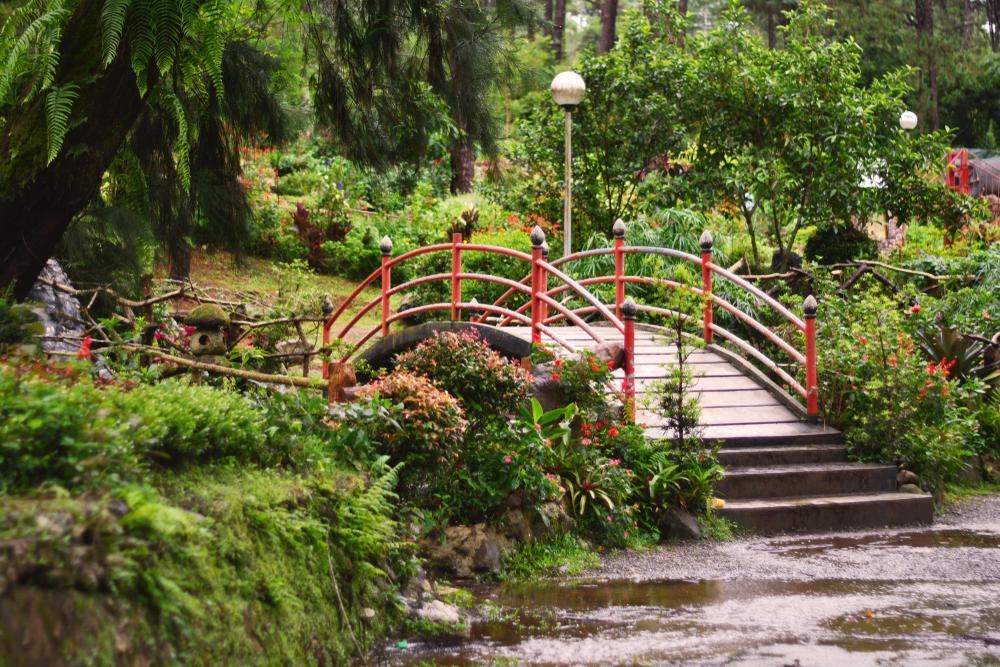 Bridge inside the Botanical Garden in Baguio