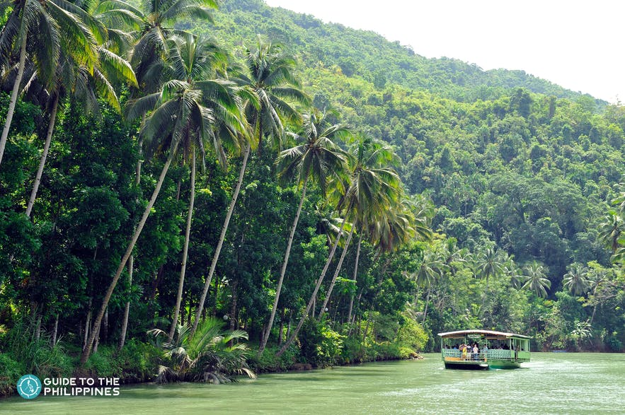 Emerald waters and lush forest at Loboc River in Bohol