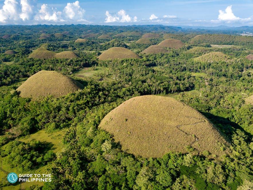 Beautiful aerial view of Chocolate Hills in Bohol