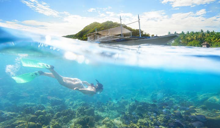 A diver in Apo Island, Dumaguete
