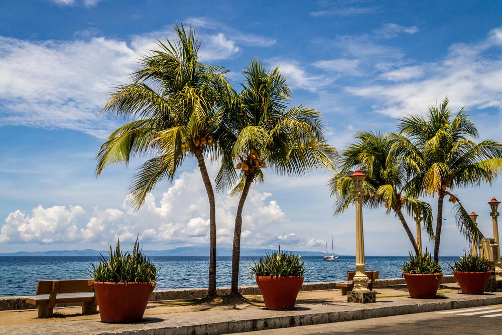 Plants along Rizal Boulevard