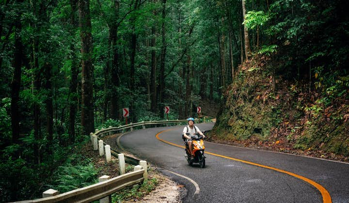 A man motorcycling in Bilar Manmade Forest