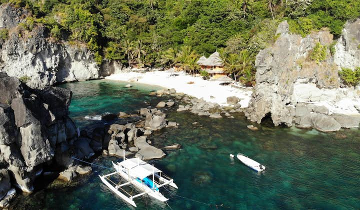 Aerial view of the beach in Apo Island Dumaguete