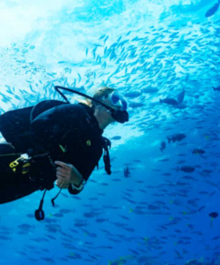 Philippine Diving Courses and Packages