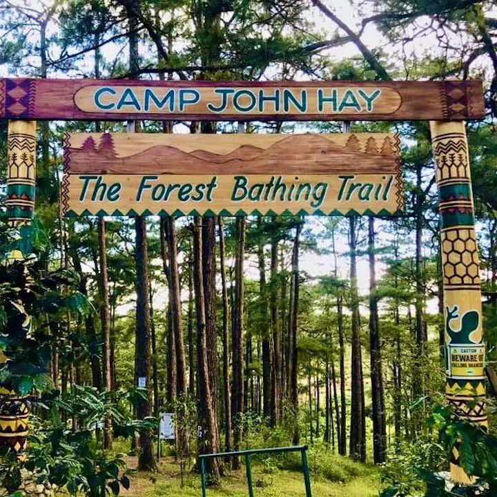 Entrance Signage of Camp John Hay Forest Bathing Trail