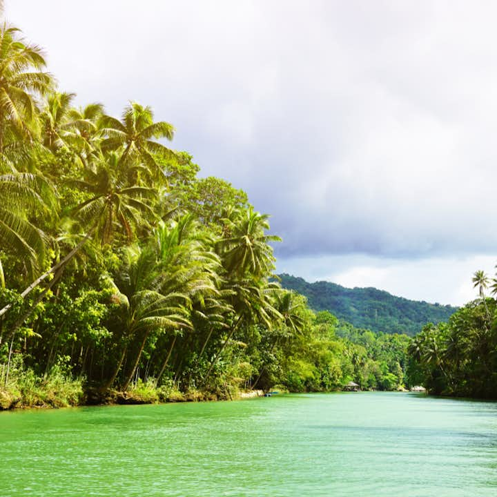 One of the most popular tourist spots in Bohol, Loboc River