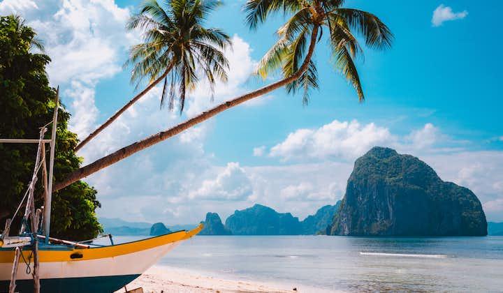 Bent palm tree in a beach in El Nido Palawan
