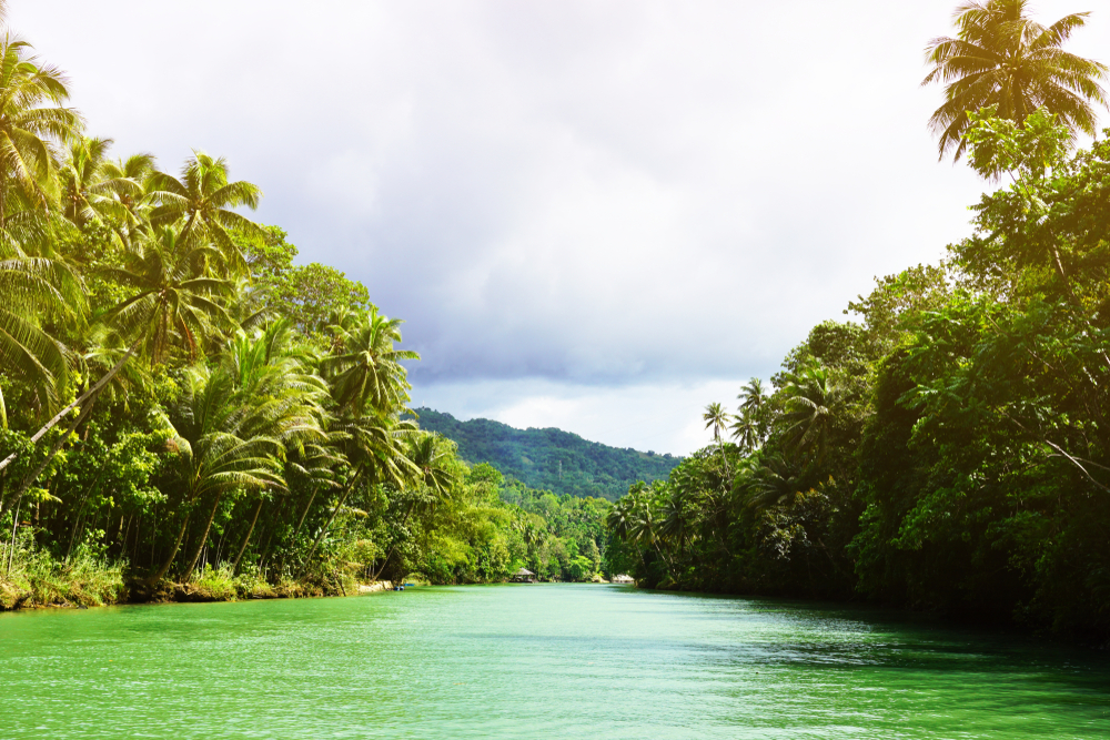 Famous Loboc River in Bohol