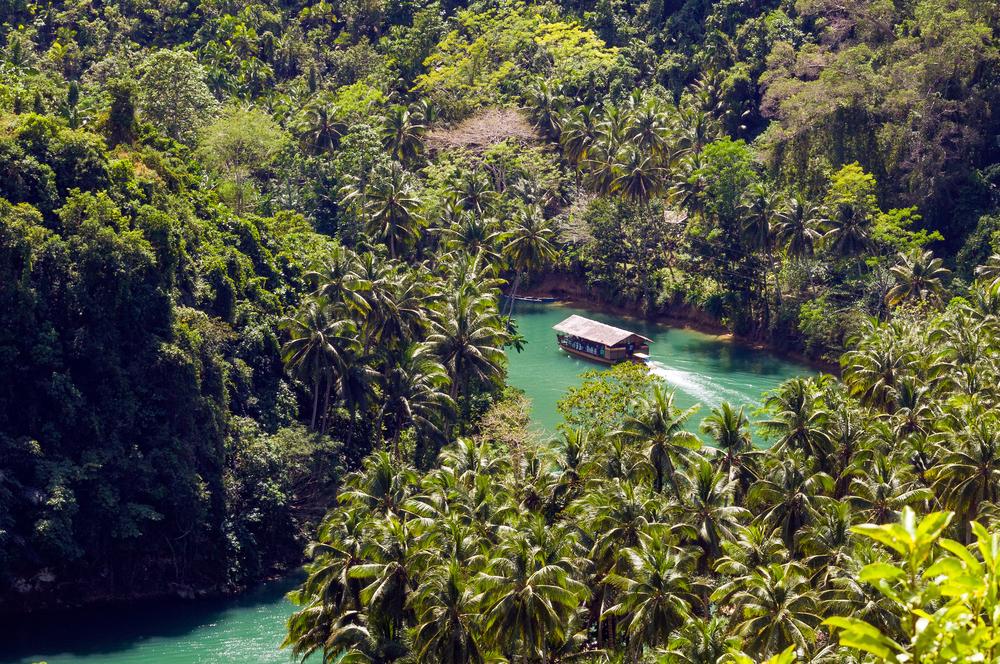 Aerial view of Loboc River in Bohol