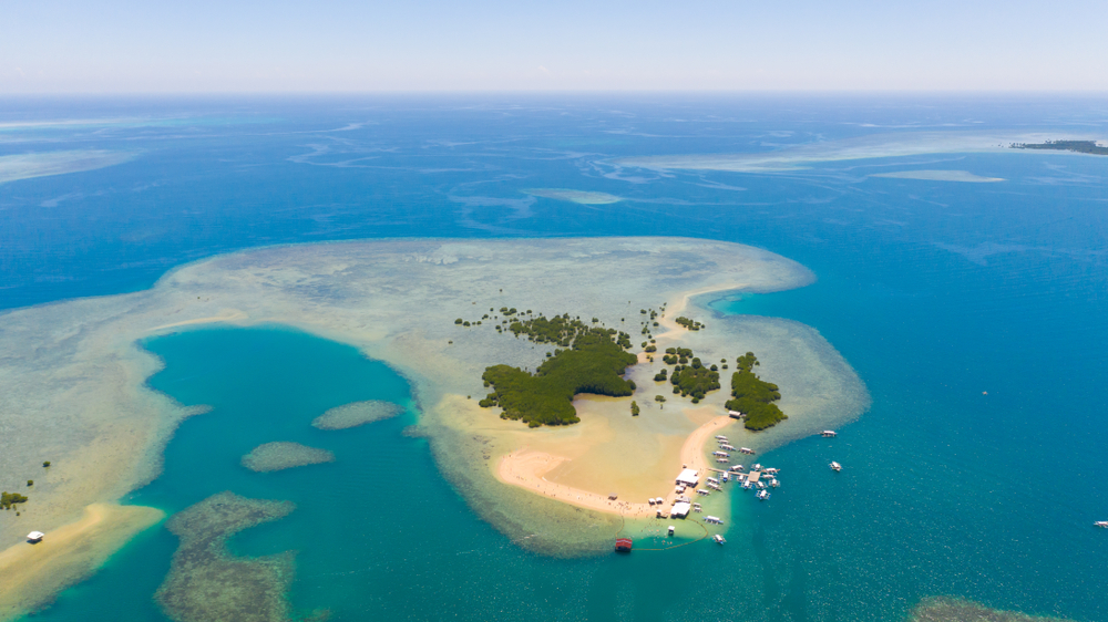 Aerial view of starfish island in Honda Bay