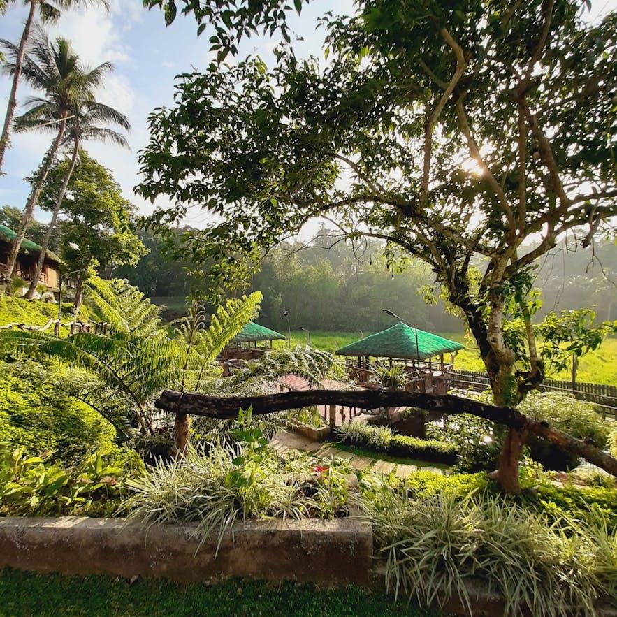 Peaceful environment in Samkara Restaurant and Garden Resort