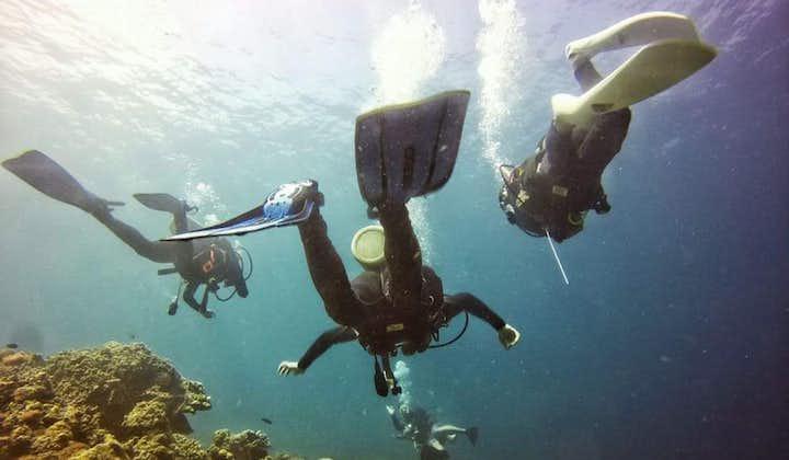Group diving session in Mactan Cebu