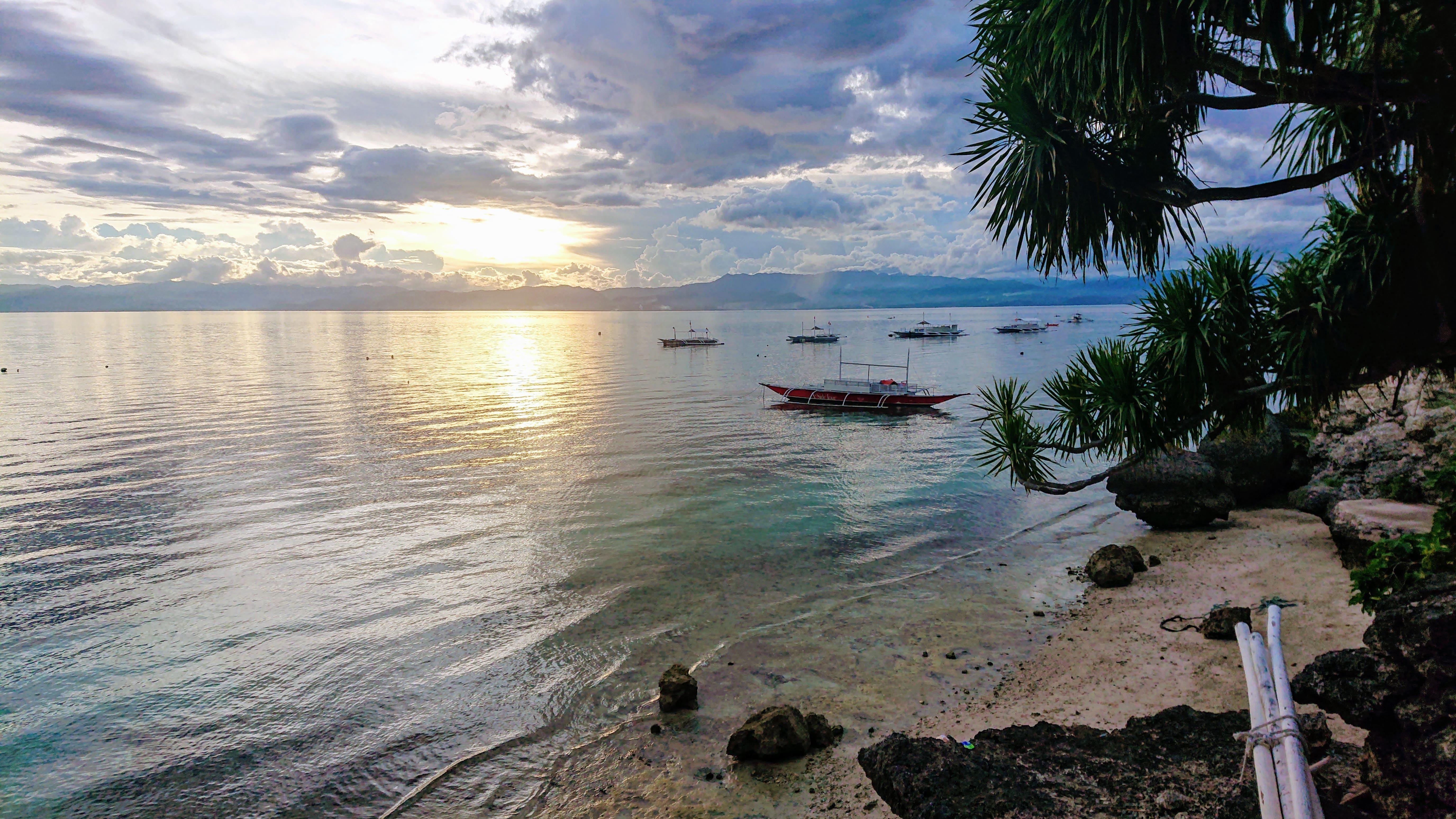 Beach near the Cebu Seaview Dive Resort