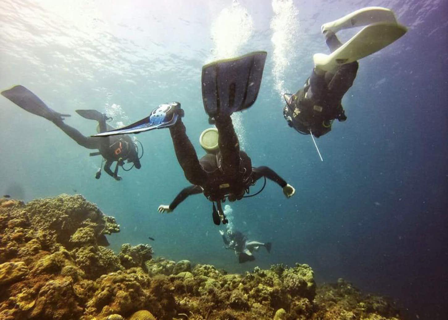 Three divers exploring the Hilutungan Marine Sanctuary in Cebu