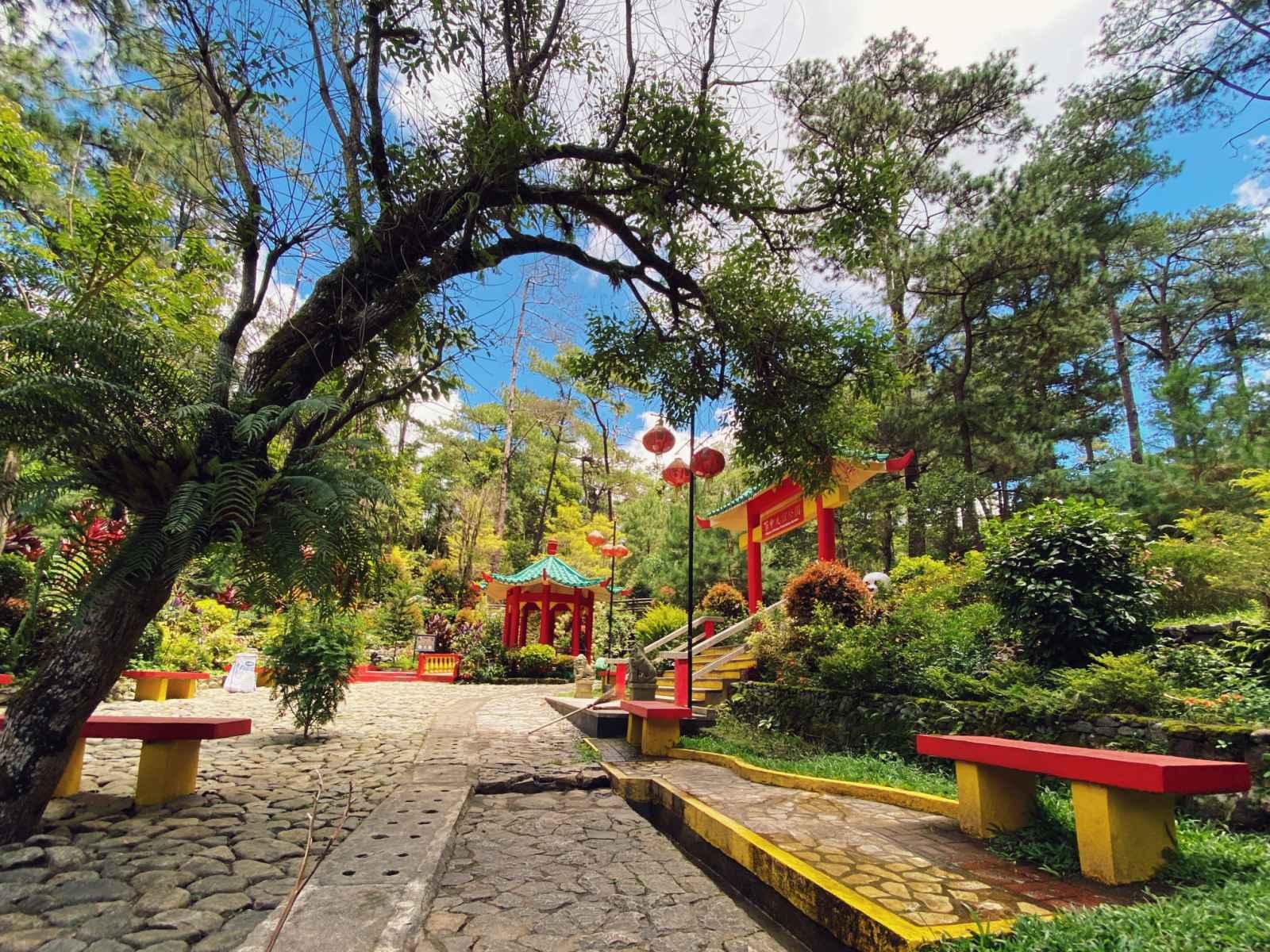 Botanical garden in Baguio