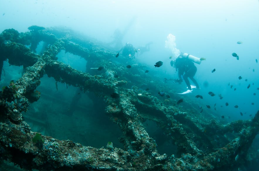 Divers at a shipwreck site in Anilao, Batangas
