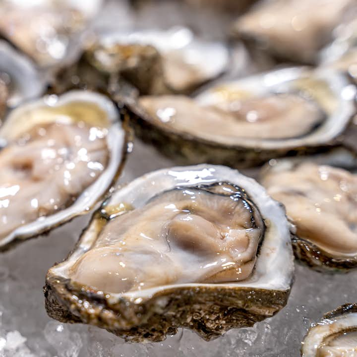 Oysters in Bohol