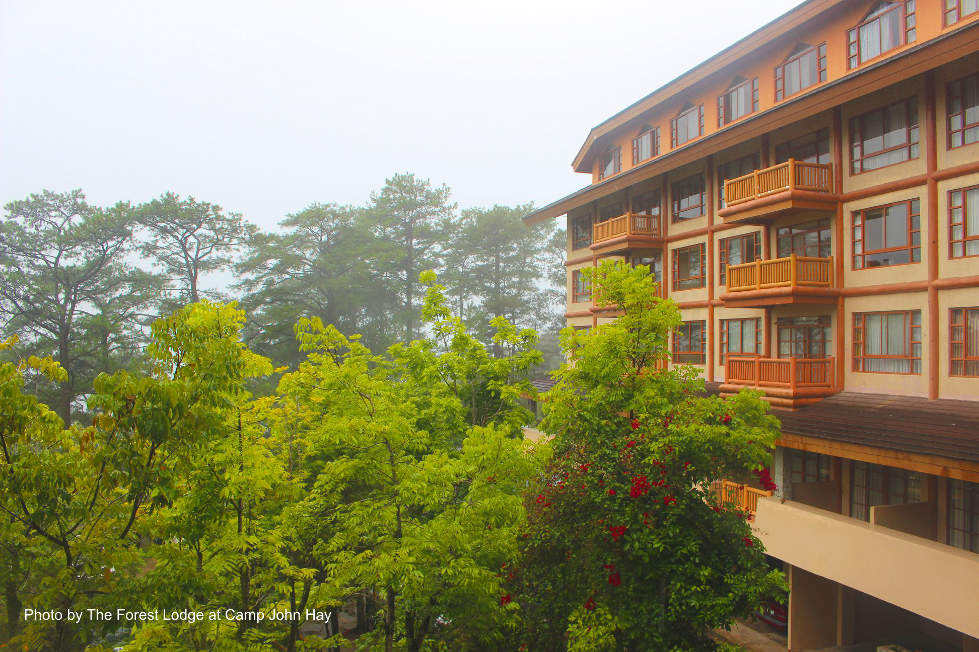 Foggy day at Baguio City