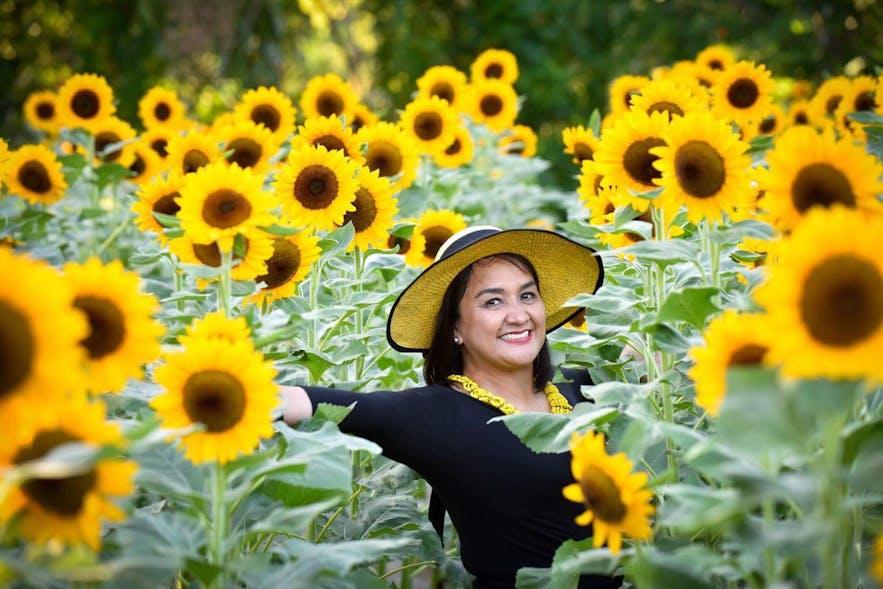 Woman posing in a field of sunflowers in Sunshine Farm