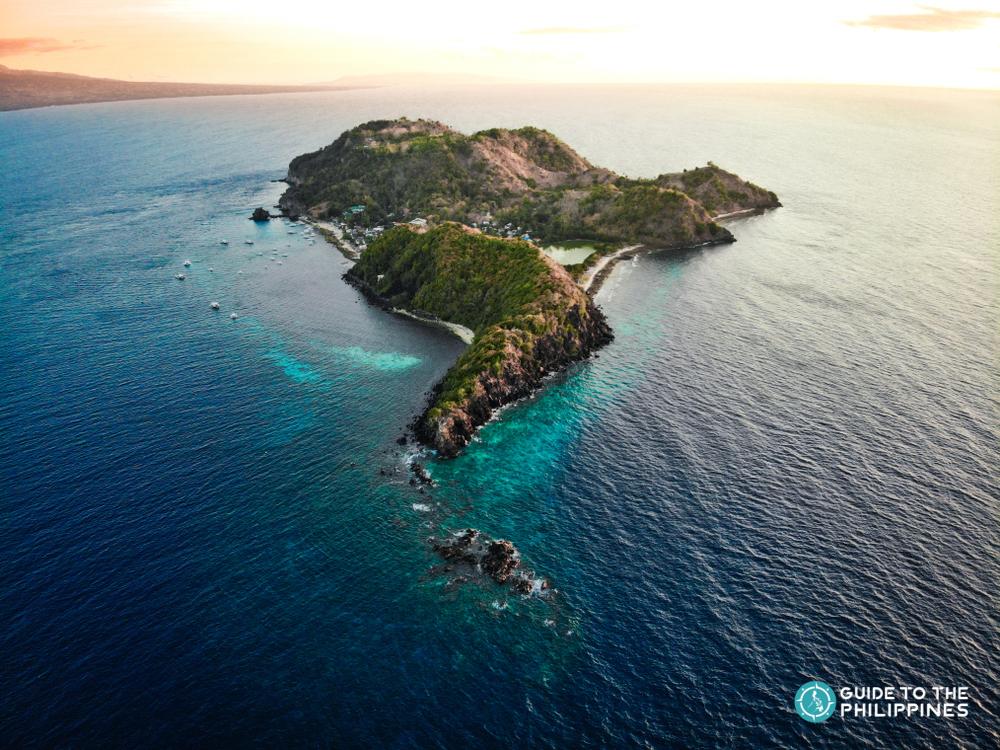 Apo Island in Dumaguete