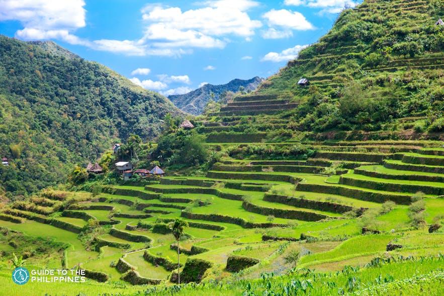 The Banaue Rice Terraces in Batad