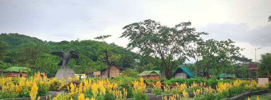 The fields at Hiraya Childhood Play Farm