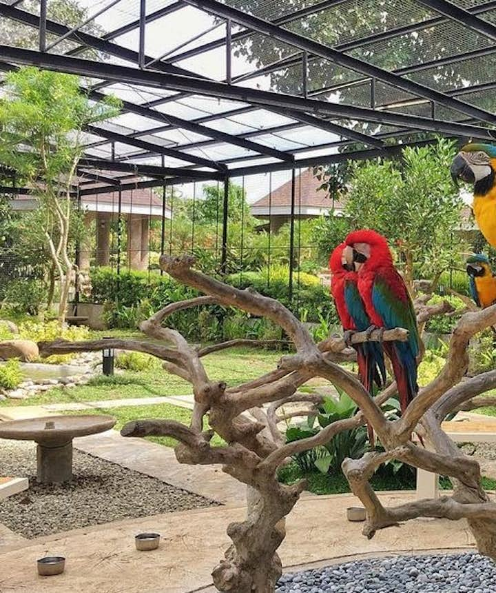 Where Kids Are Allowed In & Near Manila: 15 Kid-Friendly Outdoor Attractions, Hotels & Resorts