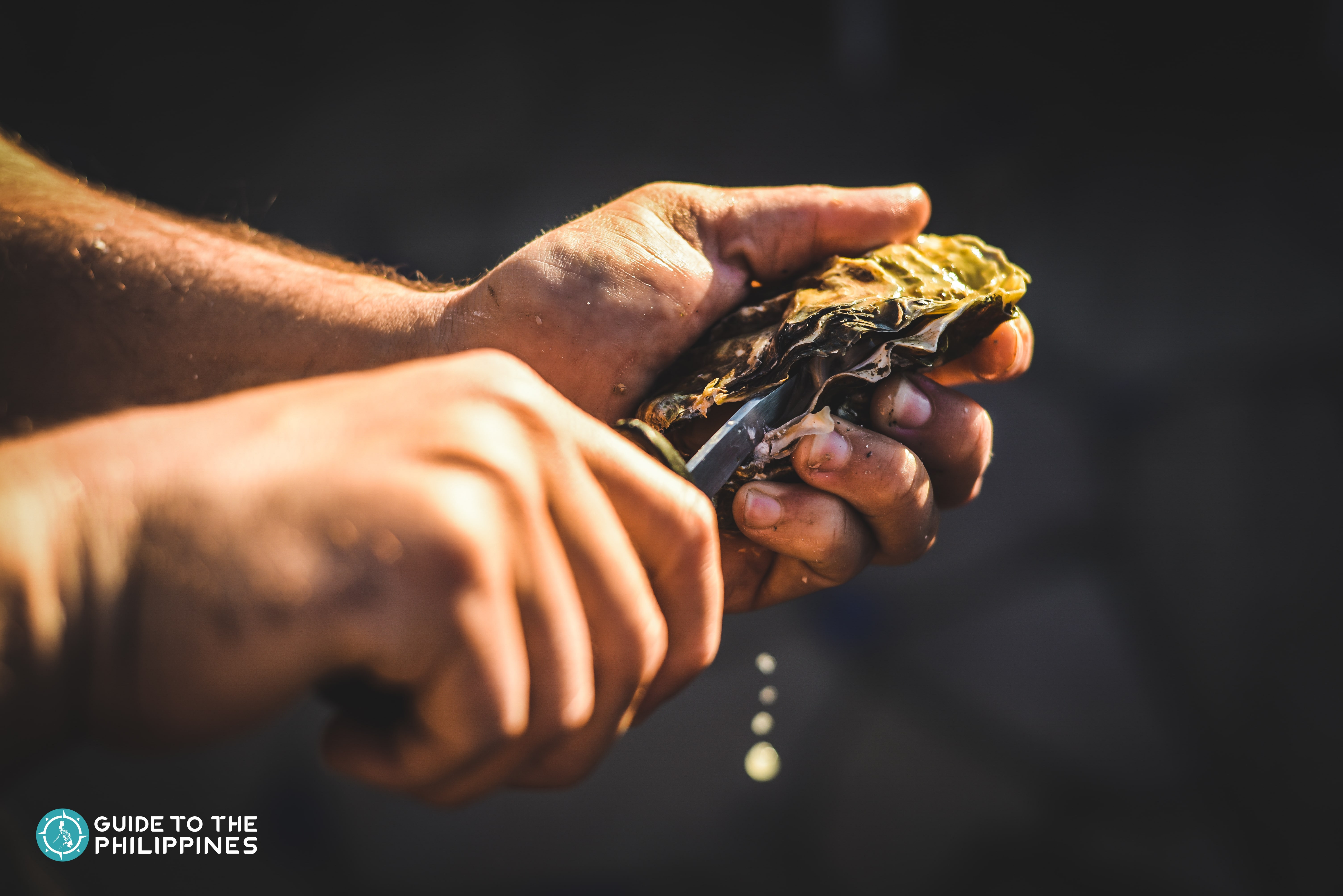 Shucking fresh oysters at Cambuhat Oyster Farm in Bohol