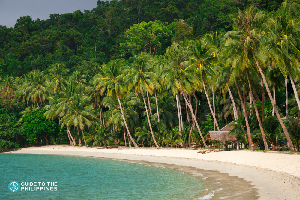 White sand beach and palm trees in Port Barton, Palawan