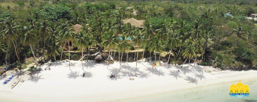 Beachfront of Anda White Beach Resort